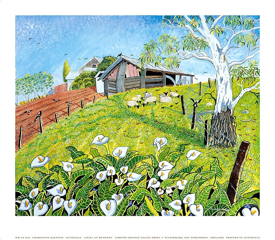 Sheep Lillies