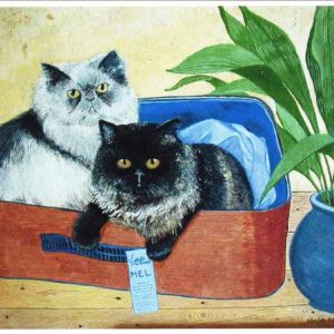 Cats in a suitcase image